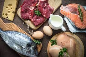 fuente alimentaria de proteinas de origen animal