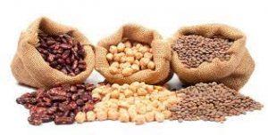 fuentes alimentaria proteíca no animal, legumbres
